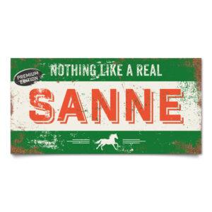 naambord-boris-groen-rood-paard-koenmeloen-naamborden