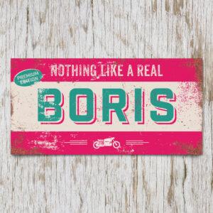 Naambord Kinderkamer Boris Roze Mint Wit